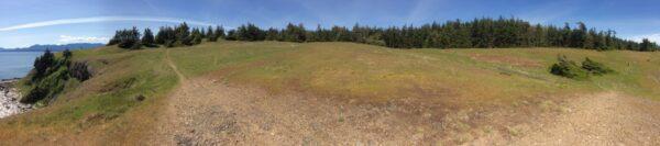 Helliwell Provincial Park Coastal Bluff restoration area panorama, June 2015.