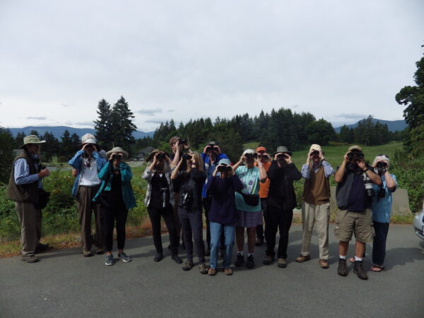 The Cowichan Valley Naturalists spot something during a Bluebird Blitz in spring 2016