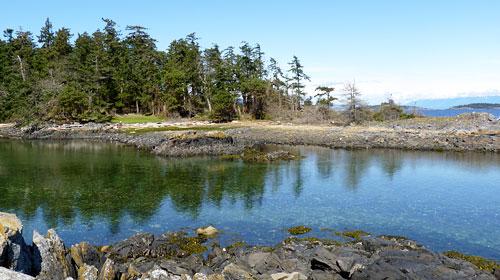 Moorecroft Regional Park shoreline