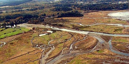 Nanaimo Estuary air photo