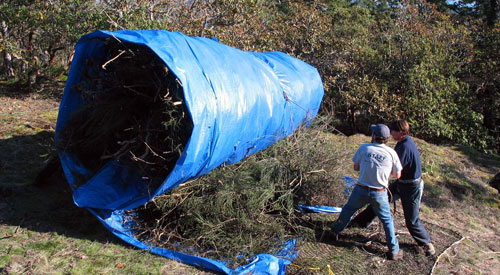 CRD Parks staff prepare a giant broom bundle for removal by helicopter